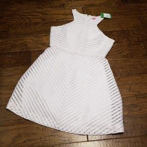 NWT Lilly Pulitzer Megyn Dress - Crochet Stripe L
